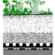 озеленение эксплуатируемой инверсионнойкровли